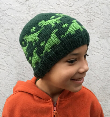 Rawr Beanie Knitting Pattern by KnitAndCrochetEvrAft